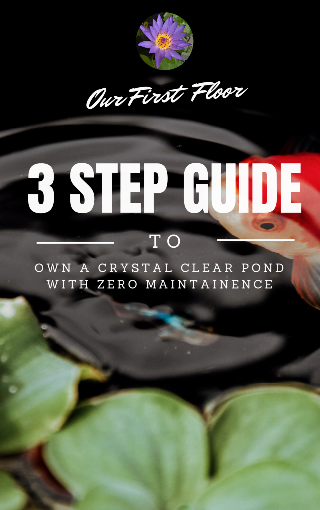 Crystal Clear Pond